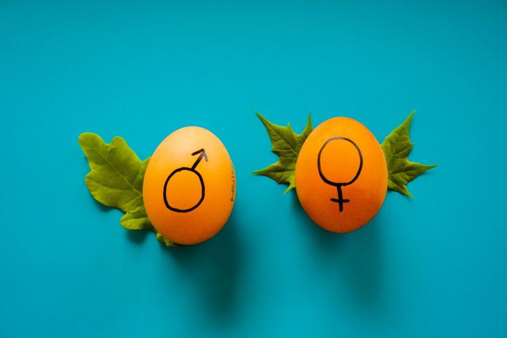 Réponses aux 5 questions sur le sexe que vous avez eu peur de poser