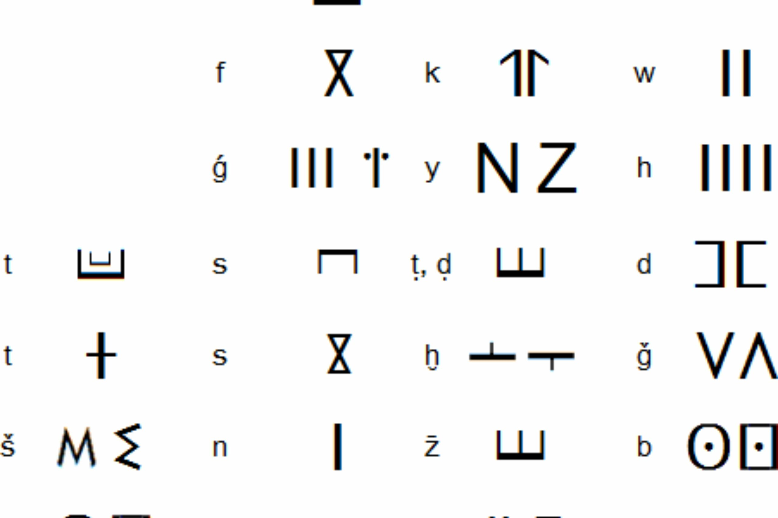 New Curriculum Project for the Amazigh Language in Primary Education