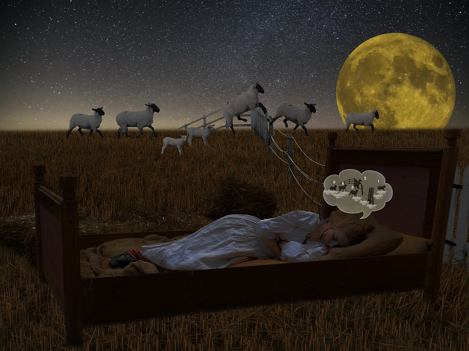 Do Sheep Count Insomniacs When They Can't Fall Asleep?